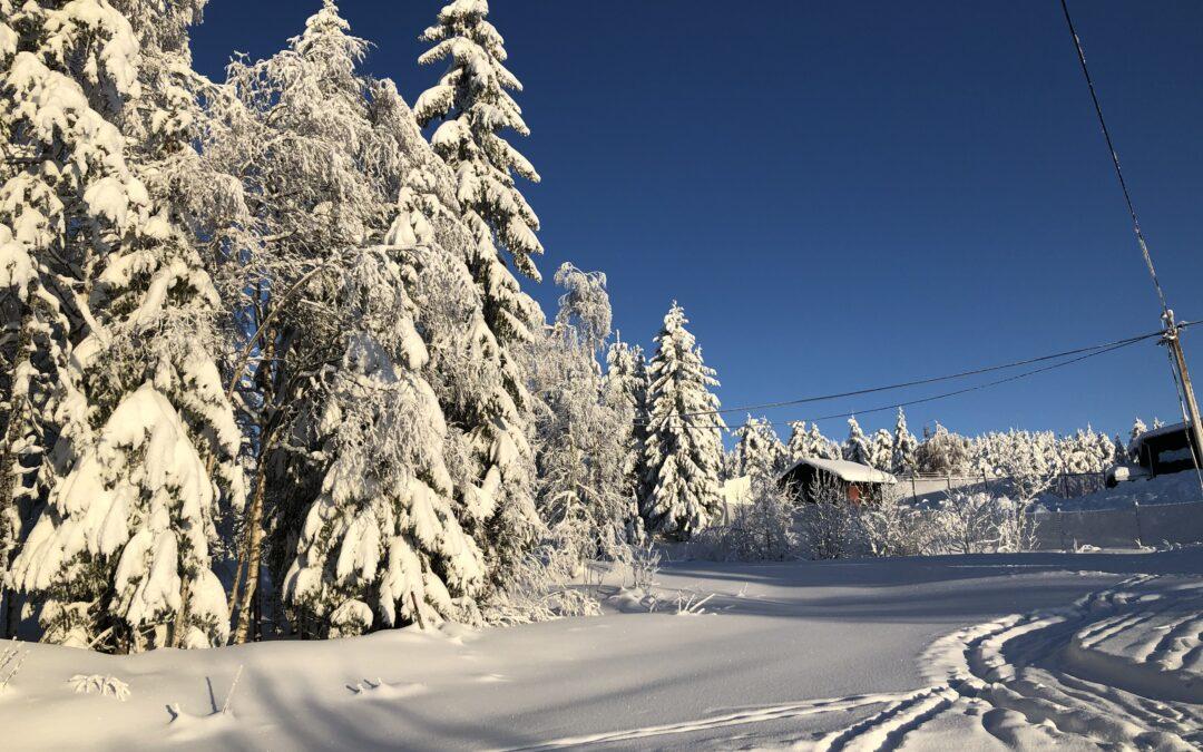 Magiskt fin skiddag på Craft Ski Marathon idag i Orsa Grönklitt